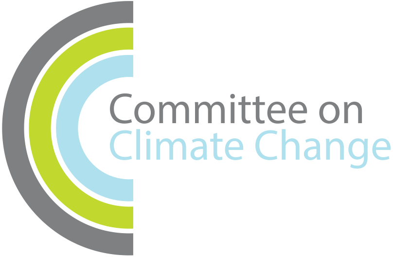 Parity thoughts on Committee on Climate Change's 2020 Progress Report